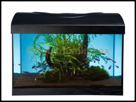40x25x30 cm aquarium abdeckung inkl beleuchtung 11 watt 40 30 set ebay. Black Bedroom Furniture Sets. Home Design Ideas