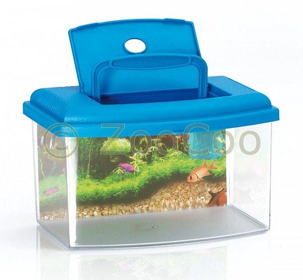 Liste de couple de amaury h et emmy m friteuse for Aquarium plastique