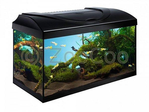 komplett aquarium set 60 60x30x30 30 54 l aquariumset komplettset nano ebay. Black Bedroom Furniture Sets. Home Design Ideas