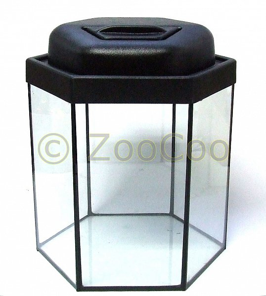 komplett hexagon aquarium set 29x29 komplettset nano. Black Bedroom Furniture Sets. Home Design Ideas