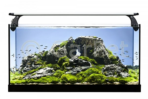 led intenso lampe lang aquarium terrarium beleuchtung. Black Bedroom Furniture Sets. Home Design Ideas