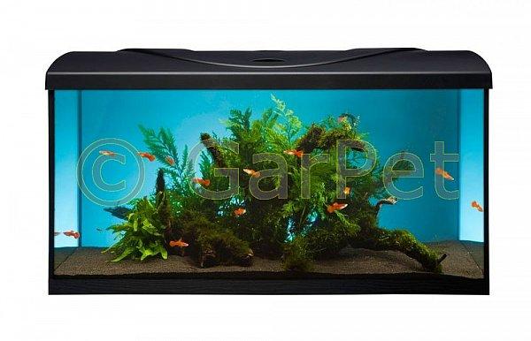 komplett aquarium set 80x35x40 112 l aquariumset komplettset allem zubeh r 100. Black Bedroom Furniture Sets. Home Design Ideas