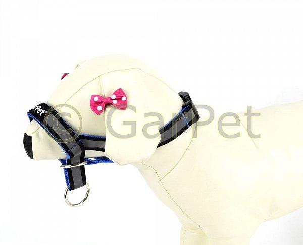 hunde erziehungshalsband frs reflektierend antizug halfter erziehungsgeschirr. Black Bedroom Furniture Sets. Home Design Ideas