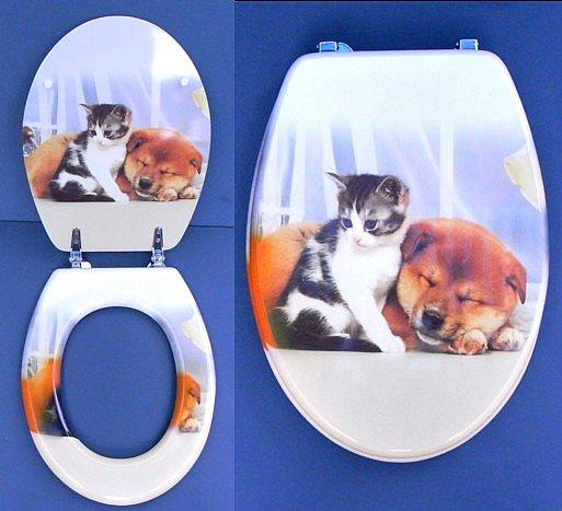 wc sitz mit foto toilettensitz klodeckel komplett lackiert. Black Bedroom Furniture Sets. Home Design Ideas